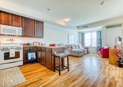 Interior-kitchen-living-room(1)