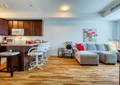 Interior-kitchen-living-room(2)